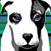 Blue Eyed Bully Art Print