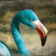 Blue Flamingo Art Print