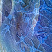 Blue Fossil Art Print