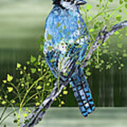 Blue Jay Mixed Media Art Print