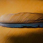 Blue Jay Way Art Print