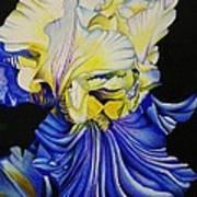 Blue Magic Art Print