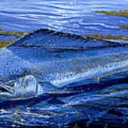 Blue Mahi Off0071 Art Print