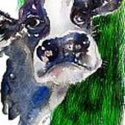Blue Moo Art Print