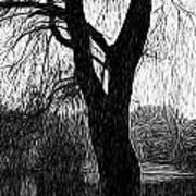Blue Mountain Pond Print by Paul Gioacchini