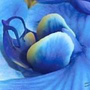 Blue Oasis Art Print