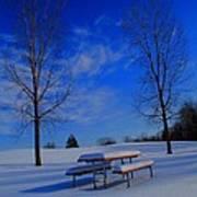 Blue On A Snowy Day Art Print