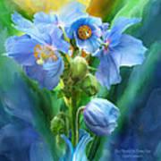Blue Poppy Bouquet - Square Art Print