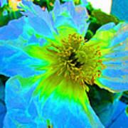 Blue Poppy Neon Art Print
