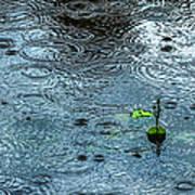 Blue Rain - Featured 3 Art Print by Alexander Senin