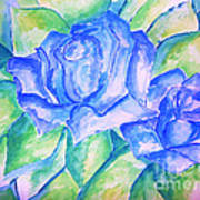 Blue Roses Art Print by Sidney Holmes