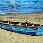 Blue Rowboat Art Print