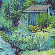 Blue Shed Art Print