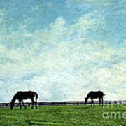 Blue Skies And Blue Grass Art Print