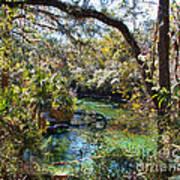 Blue Springs 1 Art Print