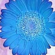 Blue Surprise Art Print