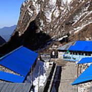 Blue Tin Roof Art Print