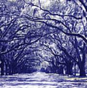 Blue World In Savannah Art Print