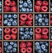 Blueberries And Raspberries  Art Print by Tim Gainey