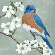 Bluebird And Dogwood Art Print