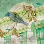 Bluebird Art Print
