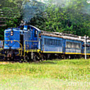 Bluebird Train Art Print