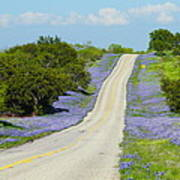 Bluebonnet Highway 2am-28667 Art Print