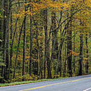 Blueridge Parkway Virginia Art Print