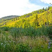 Bluff Overlooking Our Campsite By Stewart River Along Klondike Highway-yt Art Print