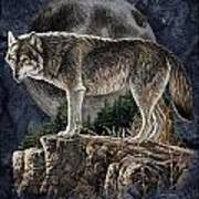 Bm Wolf Moon Art Print