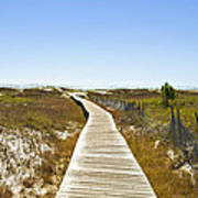 Boardwalk Art Print by Susan Leggett