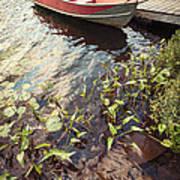 Boat At Dock  Art Print by Elena Elisseeva