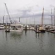 Boats At St. Augustine Harbor  Art Print
