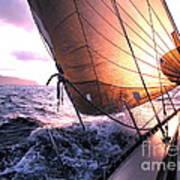 Boats Wing  Art Print