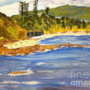 Boatsheds At Sandon Point Art Print