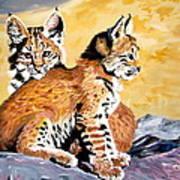 Bob Kittens Art Print by Phyllis Kaltenbach