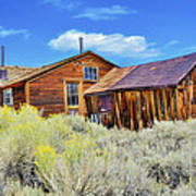 Bodie House And Sage Art Print