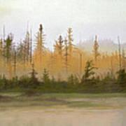 Bog Out Back Art Print by Bruce Richardson