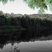 Bog River Art Print