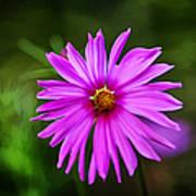 Bohemian Garden Pink Art Print