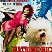 Bolognese Dog Art - Matrimonio All Italiana Movie Poster Art Print