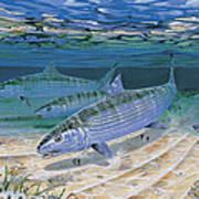 Bonefish Flats In002 Art Print