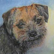 Border Terrier Jack Art Print