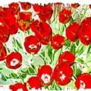 Bordered Red Tulips Art Print