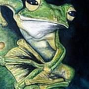 Boreal Flyer Tree Frog Art Print