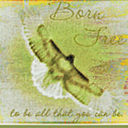 Born To Be Free Art Print