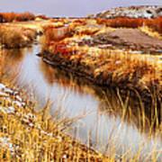 Bosque Canal Art Print