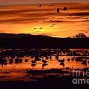 Bosque Del Apache Sunrise 1 Art Print