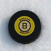 Boston Bruins Art Print