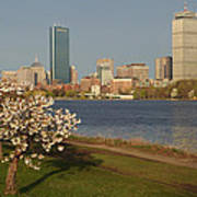 Boston Charles River On A Spring Day Art Print